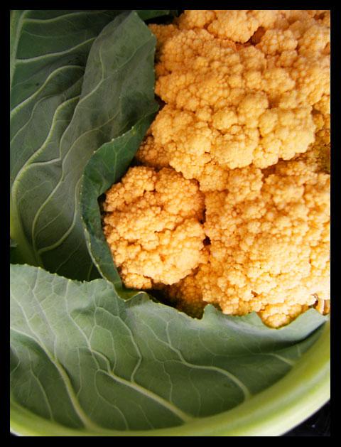 orange-cauliflower