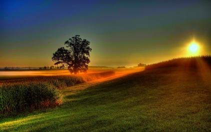 a-new-dawn-awaits-210069